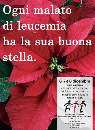 Stella Di Natale Ail 2021.Sienambiente It Il Contributo Di Sienambiente Per La Campagna Stella Di Natale 2013 Ail